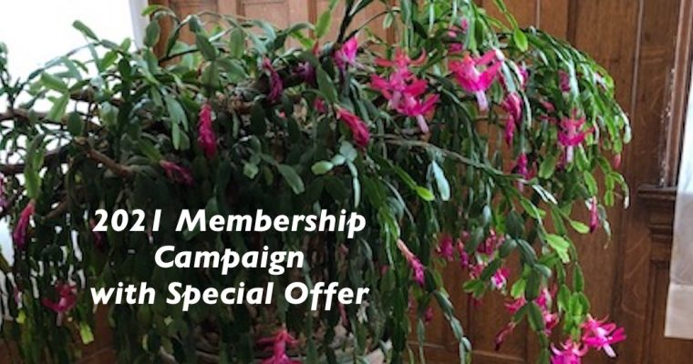 2021 Membership Campaign with Special Offer